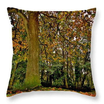 Throw Pillow featuring the photograph Autumn Gold by Katy Mei