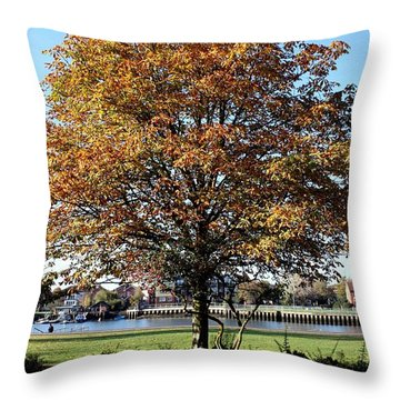 Autumn Gold Throw Pillow by Terri Waters