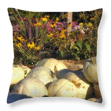 Autumn Gourds Throw Pillow by Joann Vitali