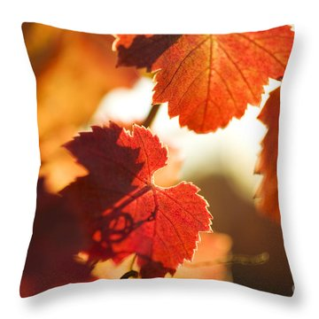 Autumn Grapevine Leaves Throw Pillow by Charmian Vistaunet
