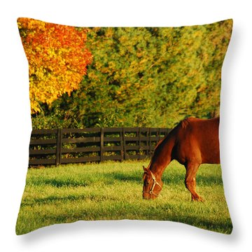 Autumn Grazing Throw Pillow