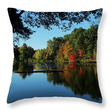 Autumn Grotto Throw Pillow by Kenny Glotfelty