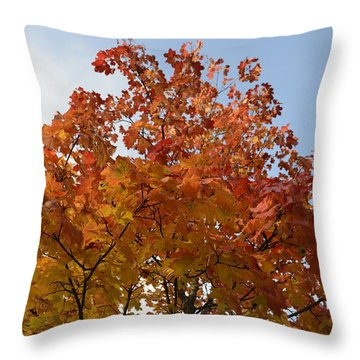 Autumn Harmony 1 Throw Pillow