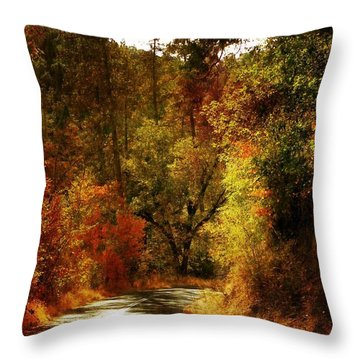 Autumn Highway Throw Pillow by Leah Moore