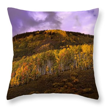 Throw Pillow featuring the photograph Autumn Hillside by Ellen Heaverlo