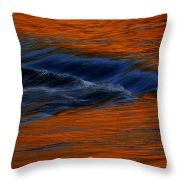 Throw Pillow featuring the photograph  Autumn River by John F Tsumas