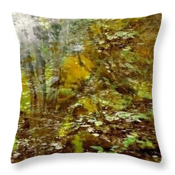 Autumn Impressions Throw Pillow by Ray Tapajna