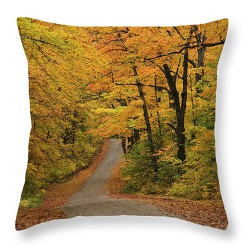 Throw Pillow featuring the photograph Autumn In Algonquin 2 by Gary Hall
