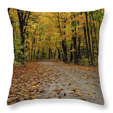 Throw Pillow featuring the photograph Autumn In Algonquin by Gary Hall