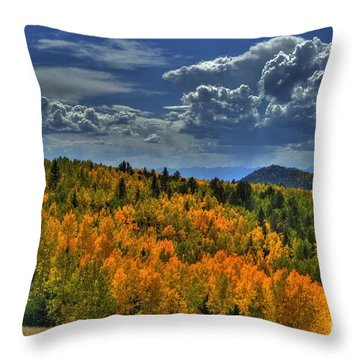 Autumn In Colorado Throw Pillow