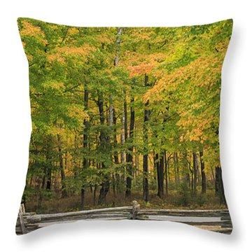 Autumn In Door County Throw Pillow by Adam Romanowicz