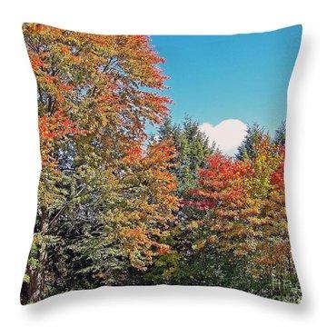 Ohio Autumn In Full Color Throw Pillow