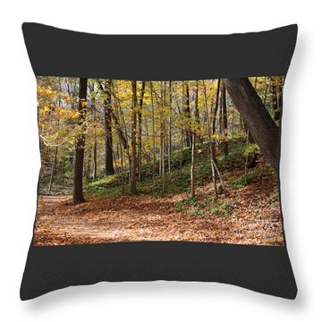 Autumn In Grant Park 4 Throw Pillow