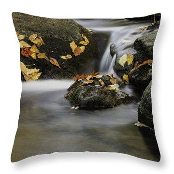 Autumn In Hackelbarney II Throw Pillow