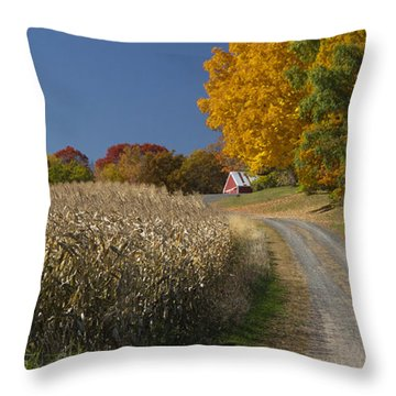 Autumn In Minnesota Throw Pillow by Garry McMichael