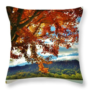 Autumn In Minnesota Throw Pillow