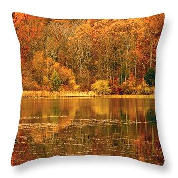 Autumn In Mirror Lake Throw Pillow