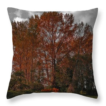 Autumn In Mt Vernon Throw Pillow