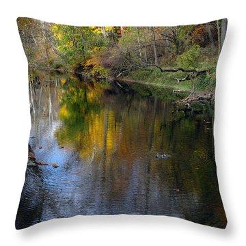 Autumn In Ne Philadelphia Throw Pillow by Dorin Adrian Berbier