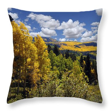 Autumn In New Mexico Throw Pillow