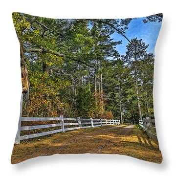 Autumn In Oakfield Throw Pillow by Ken Morris