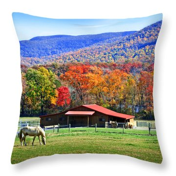 Autumn In Rural Virginia  Throw Pillow