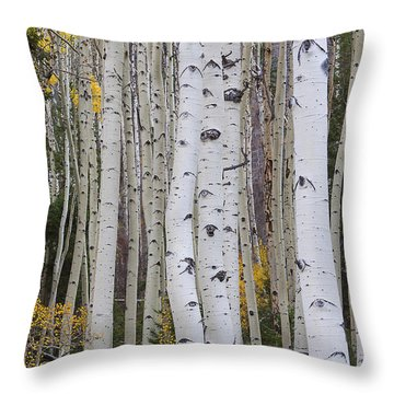 Throw Pillow featuring the photograph Autumn In The Aspens by Ruth Jolly