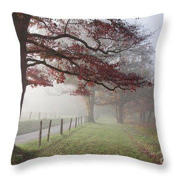 Autumn In The Cove IIi Throw Pillow by Douglas Stucky