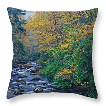 Autumn In The Great Smoky Mountains V Throw Pillow