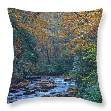 Autumn In The Great Smoky Mountains Vi Throw Pillow