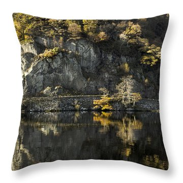 Autumn In The Lake Throw Pillow by Linsey Williams