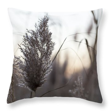 Throw Pillow featuring the photograph Autumn In The Tall Grass by Andrew Pacheco