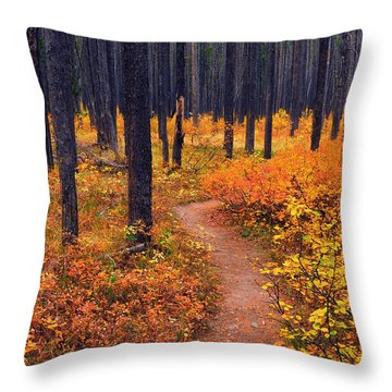 Autumn In Yellowstone Throw Pillow