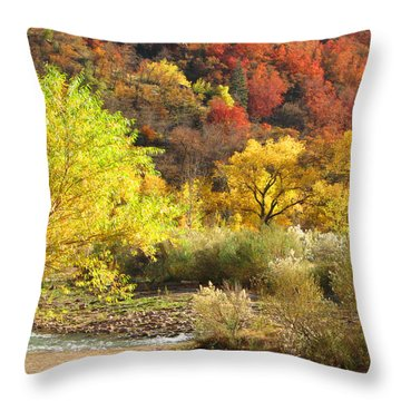 Throw Pillow featuring the photograph Autumn In Zion by Alan Socolik