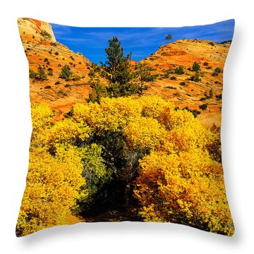 Autumn In Zion Throw Pillow by Greg Norrell