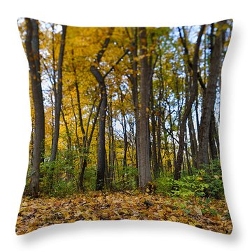 Throw Pillow featuring the photograph Autumn Is Here by Sebastian Musial