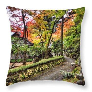 Autumn Walk Throw Pillow by John Swartz