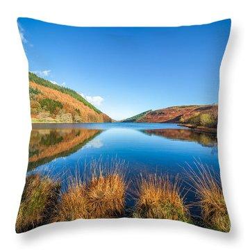 Autumn Lake Throw Pillow by Adrian Evans