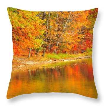 Throw Pillow featuring the photograph Fire Balls by Terri Gostola