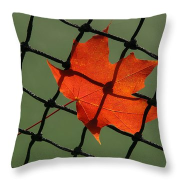 Autumn Leaf In Net Throw Pillow