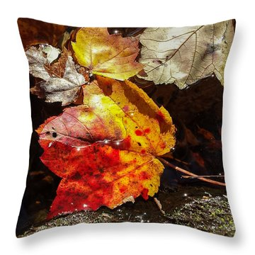 Autumn Leaves On Water Throw Pillow