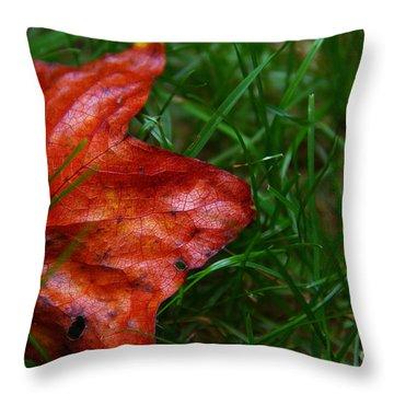 Autumn Leaf Throw Pillow by Melissa Petrey