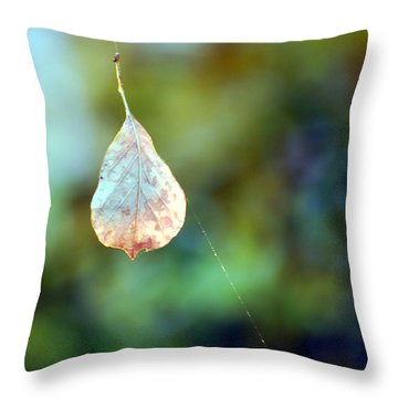 Throw Pillow featuring the photograph Autumn Leaf Suspended by Linda Cox