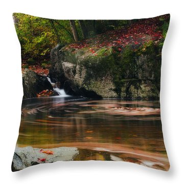 Autumn Leaf Trails Throw Pillow