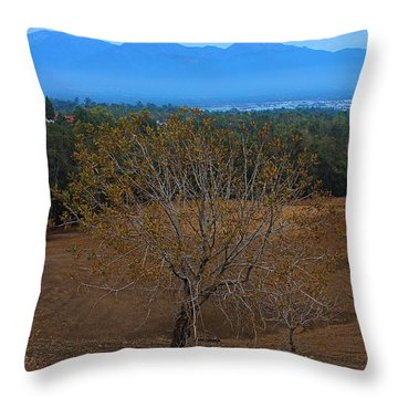 Throw Pillow featuring the photograph Autumn   Leaves Flew Away by Viktor Savchenko
