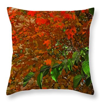 Autumn Leaves In Red And Green Throw Pillow