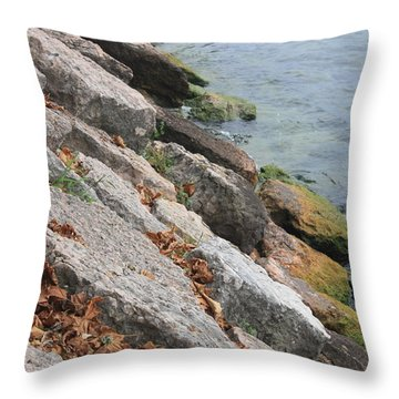 Throw Pillow featuring the photograph Autumn Leaves Lake Garda Italy by Jean Walker