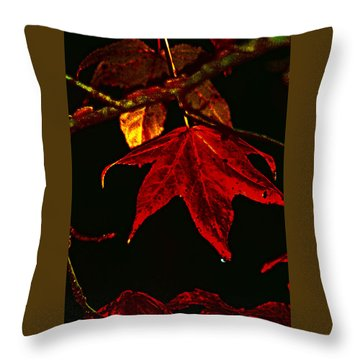 Throw Pillow featuring the photograph Autumn Leaves by Lesa Fine