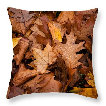 Throw Pillow featuring the photograph Autumn Leaves by Matt Malloy