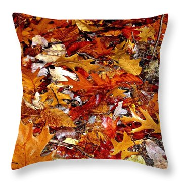 Autumn Leaves On The Ground In New Hampshire - Bright Colors Throw Pillow